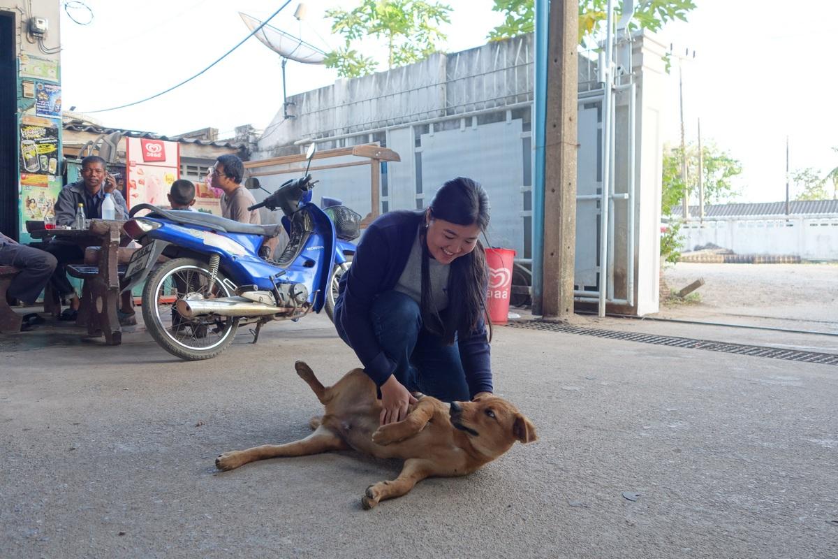 L'un des chiens errants avec la gérante des lieux