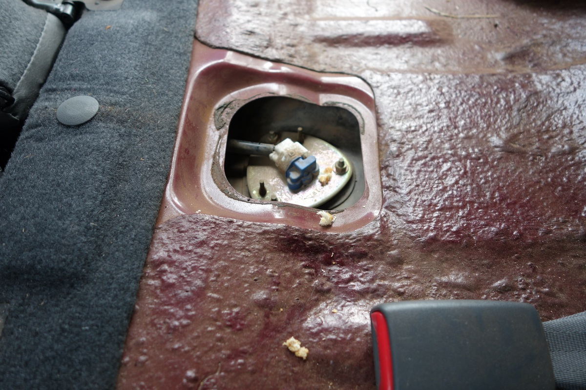 L'un des passages préférés de la souris, sous les sièges