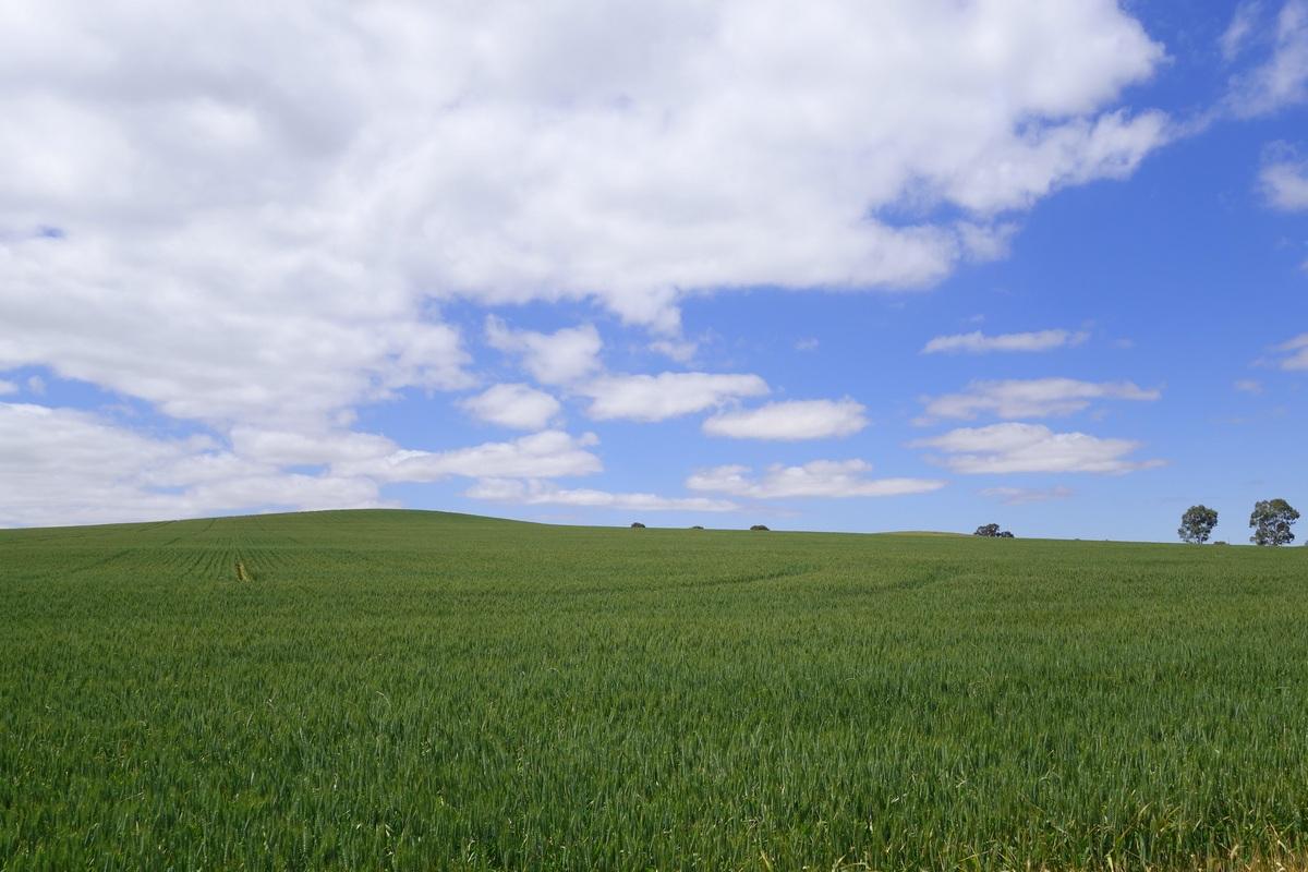 Dans une ambiance Windows XP